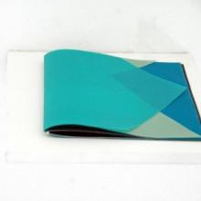 Nicola Genovese. Sighting. booklet